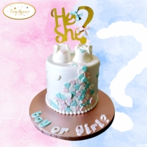 Boy-or-Girl-cake-design